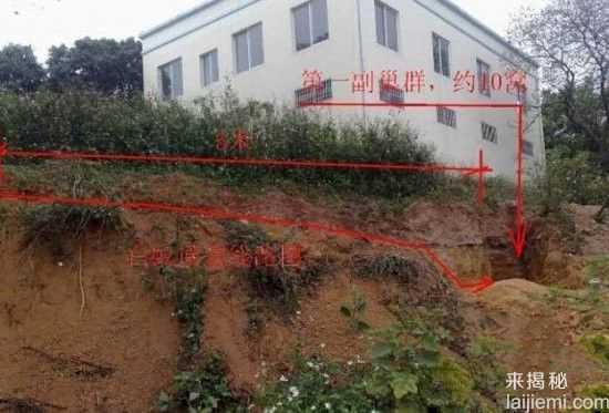 男子挖出巨型蚁穴:活捉30岁蚁后78 / 作者:UFO来啦 / 帖子ID:64981
