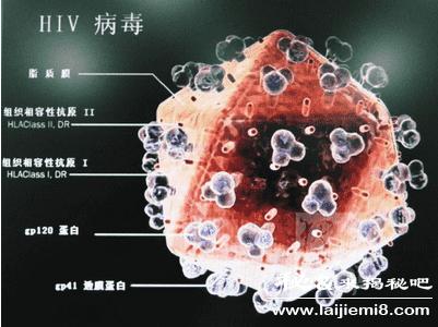 艾滋病毒来自何方的介绍83 / 作者:UFO来啦 / 帖子ID:65621