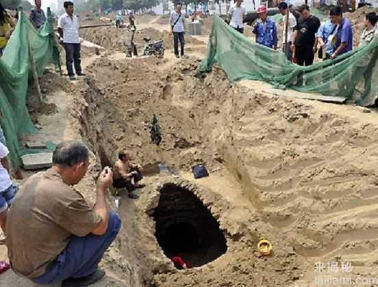 男子挖出巨型蚁穴:活捉30岁蚁后37 / 作者:UFO来啦 / 帖子ID:64981