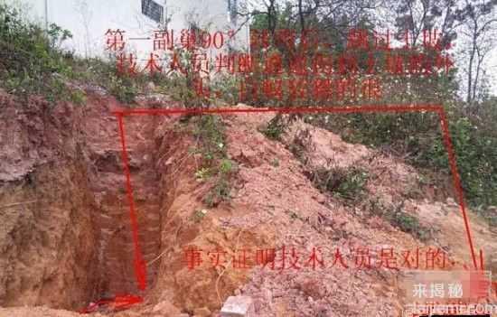 男子挖出巨型蚁穴:活捉30岁蚁后68 / 作者:UFO来啦 / 帖子ID:64981