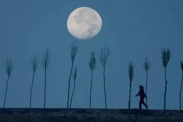 为什么人走月亮也走:参照物为身旁景物(相对运动导致)93 / 作者:UFO爱好者 / 帖子ID:67779